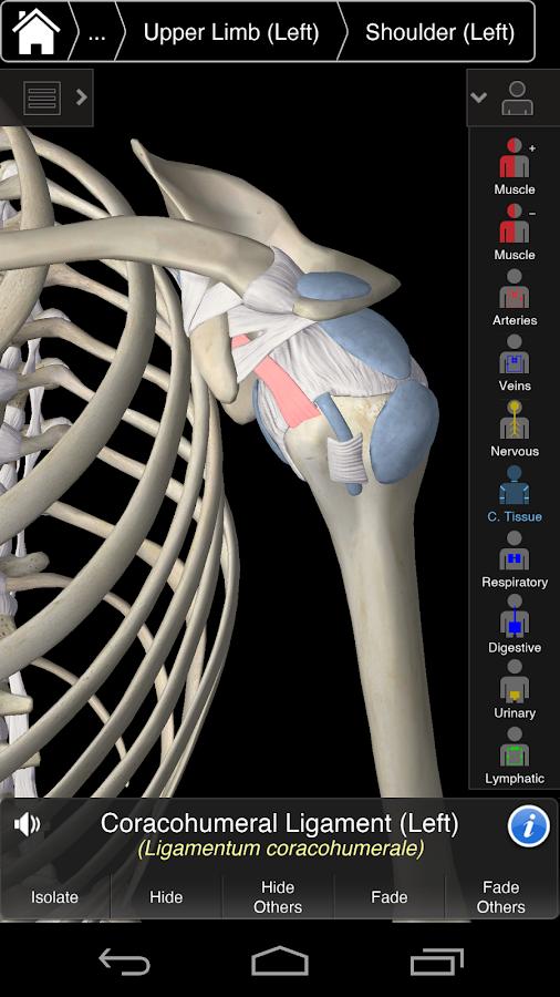 Best Anatomy App Android