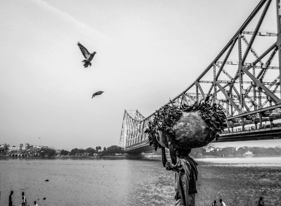 The Daily life near the Howrah Bridge by Sudarshan Das - Uncategorized All Uncategorized ( water, bird, sky, black and white, street, bridge, people, river,  )