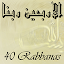 40 Rabbanas (duaas of Quran) 2.8.4 APK for Android
