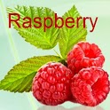 Raspberry Ketones Weight  Loss icon