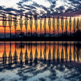 speculum reflection by Melchiorre Pizzitola - Landscapes Waterscapes ( water, reflection, nature, color, sunset, wildlife, landscape, italy )