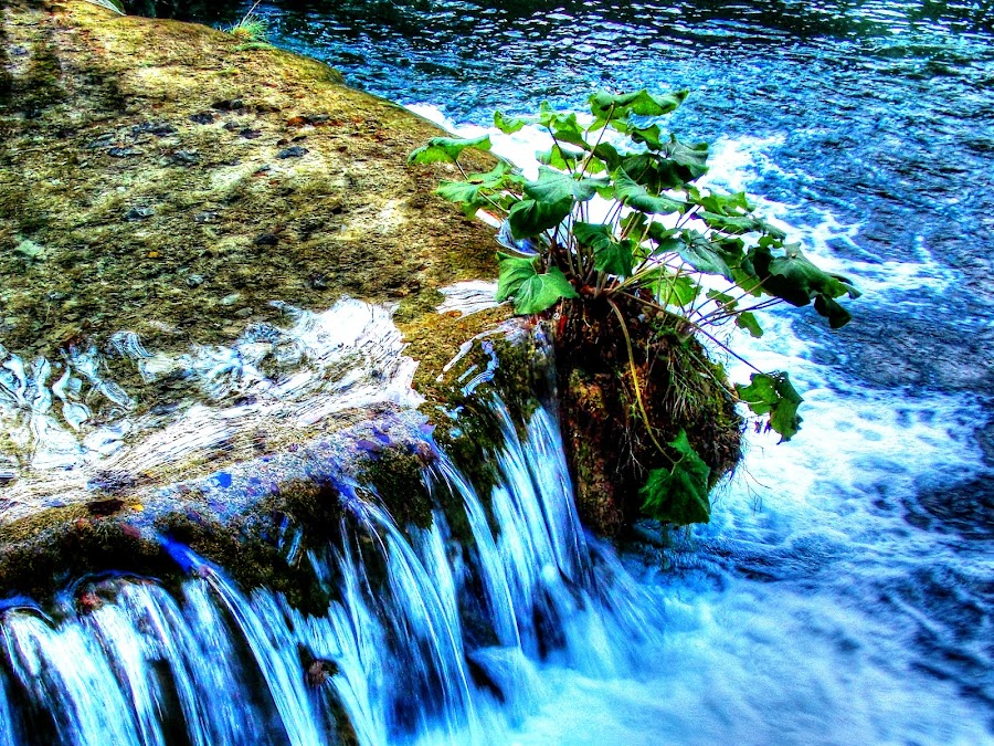 Waterfall in NP Plitvice, Croatia by Petar Paljaga - Landscapes Waterscapes ( water, plitvice, national park, hdr, nature, beautiful, waterfall, croatia, rock )