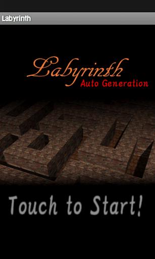 Labyrinth 限定版