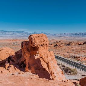 Elephant Rock by Rachaelle Larsen - Landscapes Deserts ( desert, nevada, state park, elephant rock, valley of fire )