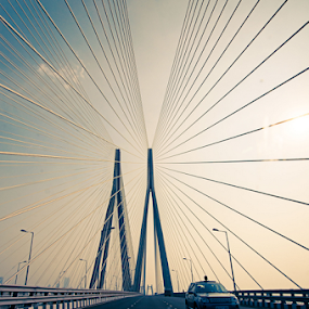 Cordial connection by Shikhar Sharma - Buildings & Architecture Bridges & Suspended Structures ( mumbai, suspension bridge, wide angle, reclamation, perspective )