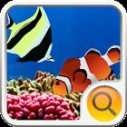 Coral Ocean Search Widget icon