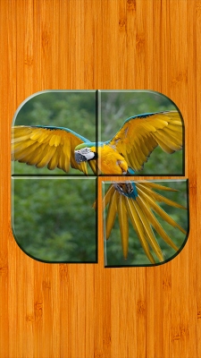Bird Picture Puzzle Games Free - screenshot
