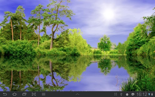 Forest Pond Free- screenshot thumbnail