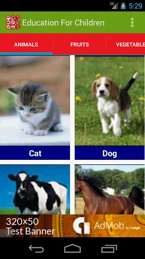Animal Sounds Education
