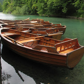 Boats by Name of Rose - Transportation Boats ( water, plitvice, national park, boats, croatia, lakes, trip, travel )