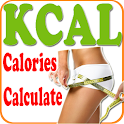 Calorie Counter Fat Weight icon