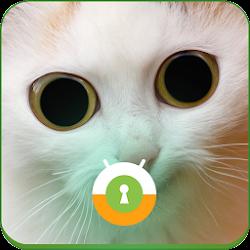 White Cat Wall & Lock