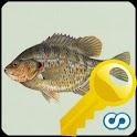 Name That Fish Key
