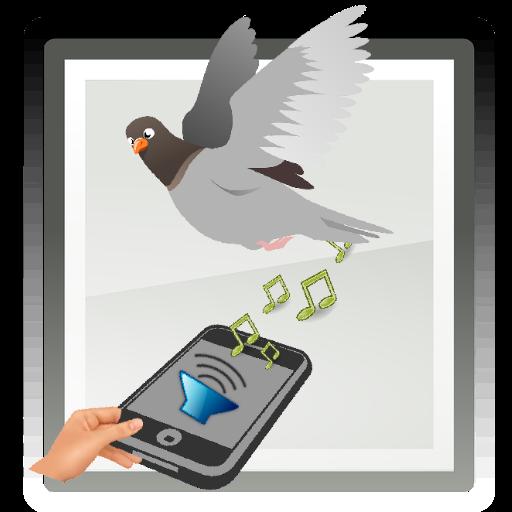 Anti pájaros repelente aves