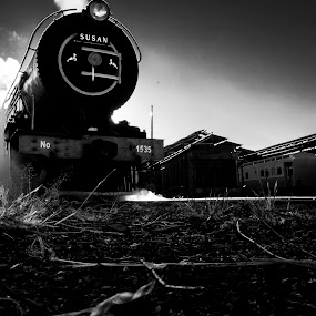 Susan the Steam Train by Farrah-Diba Sing - Transportation Trains ( black and white, johannesburg, train, trains,  )
