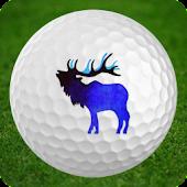 Allenmore Golf Course