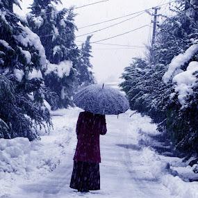 A friend (Umbrella) by Suaib Akhter - People Street & Candids ( potrait, winter, cold, female, street, snow, umbrella,  )