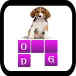 Find the Word Game 1.7 Apk