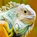 3D Lizard icon