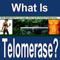 Telomerase logo