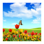 3D flower butterfly wallpaper