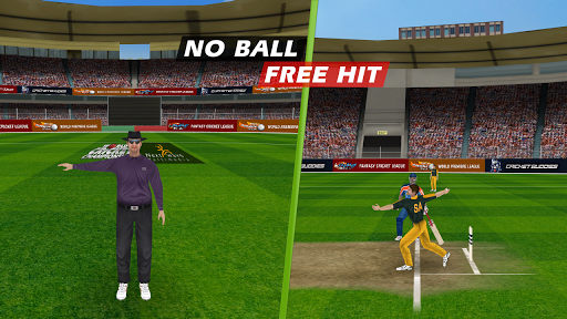 World Cricket Championship Pro screenshot