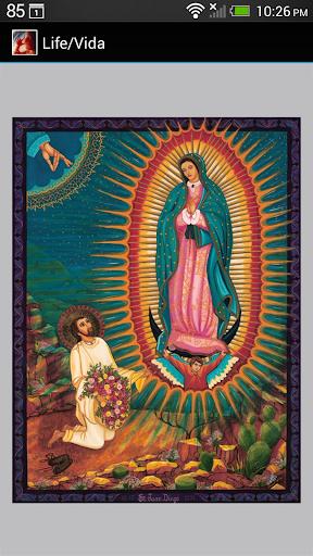 Life Vida - Diocese of Phoenix
