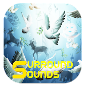 Surround Sounds - Relax & Fun