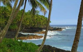Screenshot of Hawaiian Waves Video & Alarm