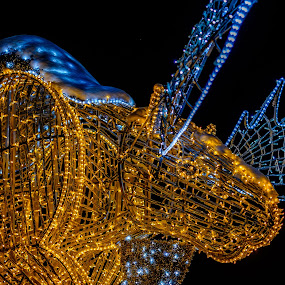 Electric Moose by Jack Brittain - Public Holidays Christmas ( holiday, lights, winter, canada, niagara falls, moose, ontario )