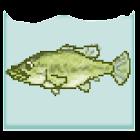 ブラックバスを飼おう(お魚飼育&育成シミュレーション) icon