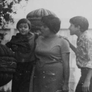 Mom's Silken Aubergines.