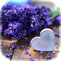 Love Flowers Live Wallpaper