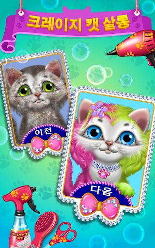 크레이지 캣 살롱 - 고양이 미용실