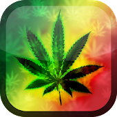 Weed HD Wallpaper
